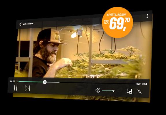 Curso de CUltivo - Aulas em vídeo sobre cultivo de Cannabis